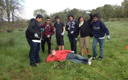 TEASEL TEAM - Ms Jouaneh's 9th graders from New Tech High school helped the Napa County Regional Park and Open Space District's restoration project at the Napa River Eco Reserve pulling out Teasel. Pictured from left, Jose Santana-Avina, Macelo Martinez, Joseph Cazares, Alexis Gamez, Carlos Diaz-Valencia, Ottmar Navarrette and lying on the job is Robert Sando.